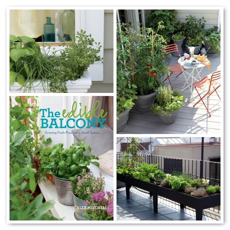 18 Edible Garden Designs Ideas: The Edible Balcony